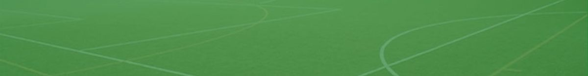 Sports pitch consultant header